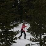 AC-skier 329